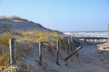 Dunes sur Ilma Meijer