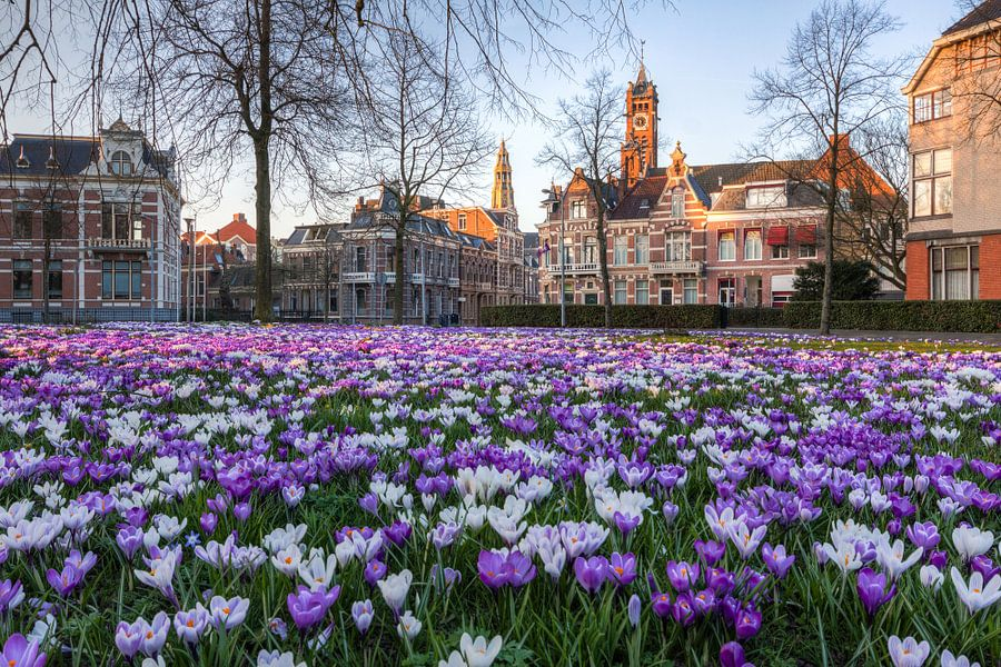 Lente in Groningen (Emmaplein) van Frenk Volt