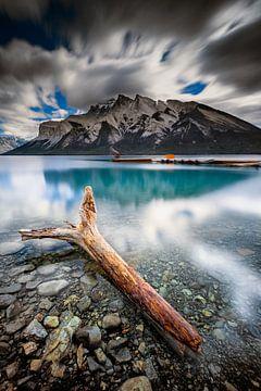 Souche sur le lac Minnewanka van Arnaud Bertrande