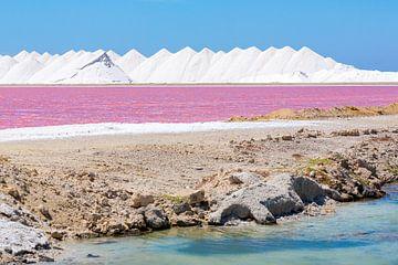 Landschaft mit Bergen von weissem Salz und rosa Salzsee auf Bonaire von Ben Schonewille