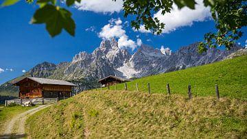 """Mountain Landscape """"Alm"""" sur Coen Weesjes"""