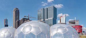Drijvend paviljoen bij de wolkenkrabbers Kop van Zuid, Rotterdam, Zuid-Holland, Nederland