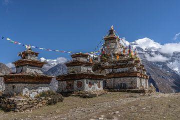 Stupas in de Himalaya Nepal van Tessa Louwerens