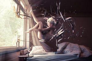 Falling Asleep van Stefan Witte