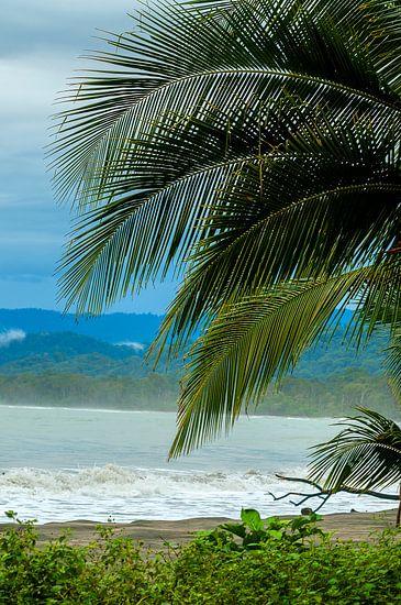 Costa Rica: Cahuita National Park