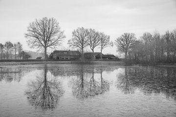 Achterhoek, Niederlande von Jan Fritz