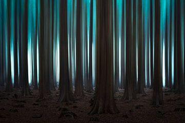 Abstrakter Kiefernwald von Jeroen Lagerwerf