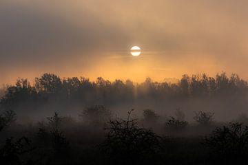 gesluierde zon van Tania Perneel