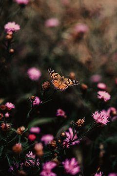 Schmetterling mit violetten Blüten von Amber den Oudsten