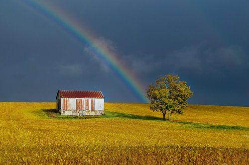 Regenboog boven goud-geel Canadees bonenveld