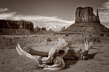 Monument Valley 04 von Peter Bongers