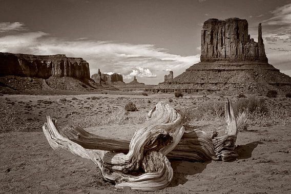 Monument Valley 04 van Peter Bongers