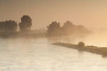 Ijssel in de mist van Elroy Spelbos