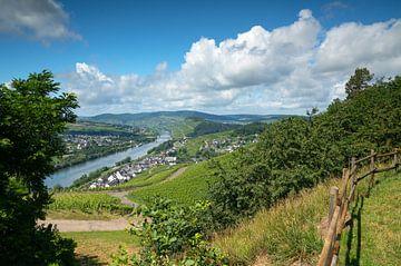 Moezel bij Bernkastel, Duitsland van Alexander Ludwig