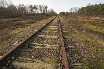 "Old railway line ""Borkense Course"" in the Netherlands von Tonko Oosterink"