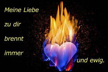 Meine Liebe zu dir brennt immer und ewig. von Norbert Sülzner