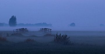 Nederlands landschap van Nynke Altenburg