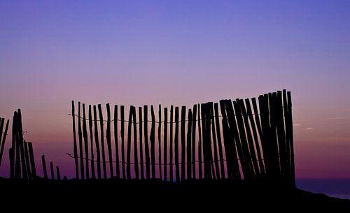 strandpaaltjes bij zonsondergang