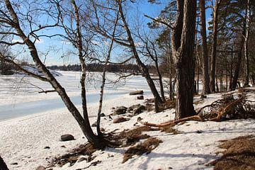 Frozen lake von Hélena Schra