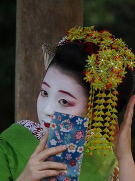 Geisha van eric piel