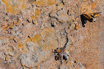 Rusty Leaves V van LYSVIK PHOTOS