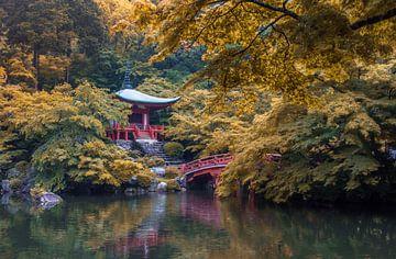 Wunderschöne Herbstfarben im Daigo-ji-Tempel in Kyoto, Japan. von Claudio Duarte