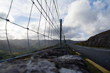 ''vangrail'' Old Kenmare Road, Ierland van Tess van Tilburg