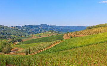 Die toskanische Landschaft von Ronald Derksen
