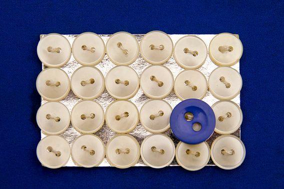 Blauwe knoop van marleen brauers
