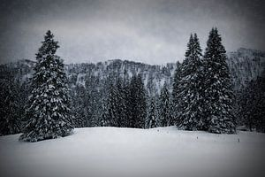 Wintermärchen HEMMERSUPPENALM IV