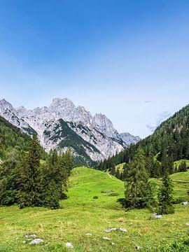 Blick auf die Bindalm im Berchtesgadener Land von Rico Ködder