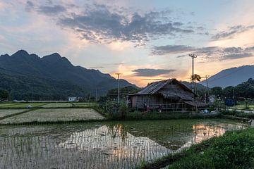 Sonnenuntergang im Bergdorf Mai Chau. Nordvietnam.  Asien von Rick van der Poorten