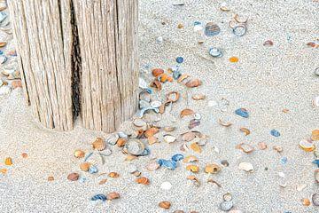 Strand met gekleurde schelpen. van Ron van der Stappen
