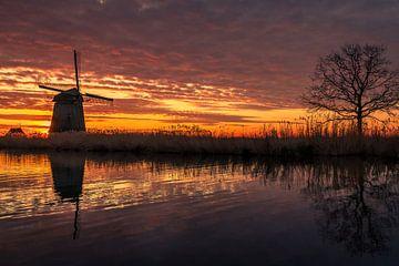 Mühle mit Baum von Peter Heins