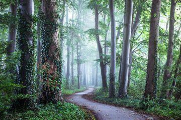 Volg je eigen pad... van Niels Barto