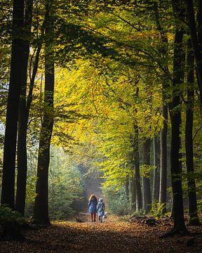 Wanderer geniessen die Herbstfarben im Wald von OCEANVOLTA
