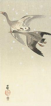 Gans, die im Schnee von Ohara Koson fliegt