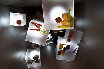 Floriade 2012 'Cubes' van Greetje van Son