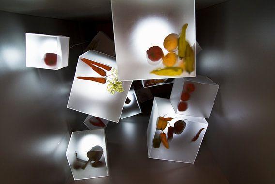 Floriade 2012 'Cubes'