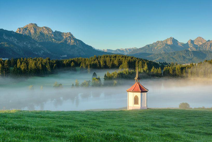 A foggy summer morning in the Allgäu van Michael Valjak