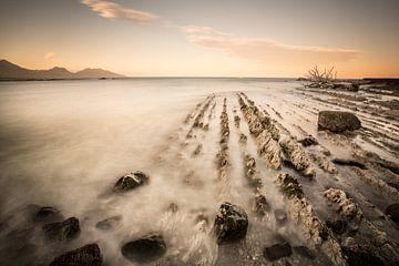 Küste Neuseeland von Remco Siero