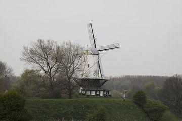 Witte Hollandse molen in de Winter van Spijks PhotoGraphics