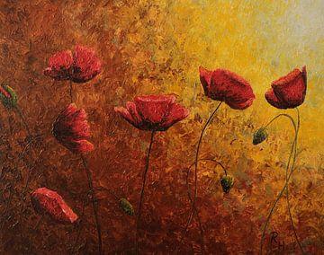 Mohnblumen in goldener Sonne von Russell Hinckley