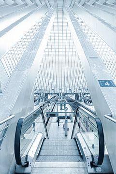 Rolltreppe zum Bahnsteig im Bahnhof Lüttich - Guillemins von Daan Duvillier