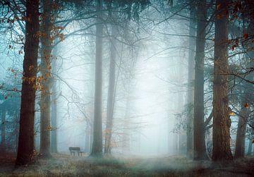 So Lonely van Kees van Dongen