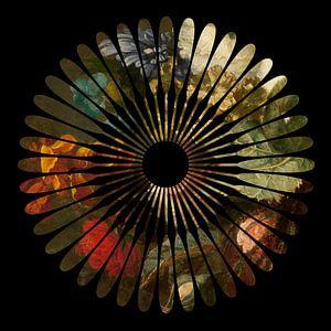 Bloem in bloemstilleven van Studio Maria Hylarides