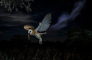 Nightly ghost van Mario Cea Sanchez