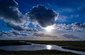 Uitzicht over een Nederlands polder van Anita van Gendt
