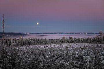 Een deken van mist. van Marco Lodder
