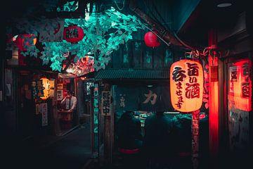 Steeg met restaurant and lampion in Tokyo van Mickéle Godderis